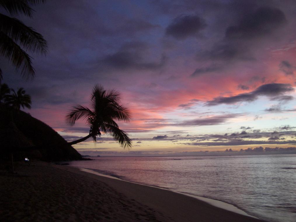 fiji_octopus_sunset2.jpg