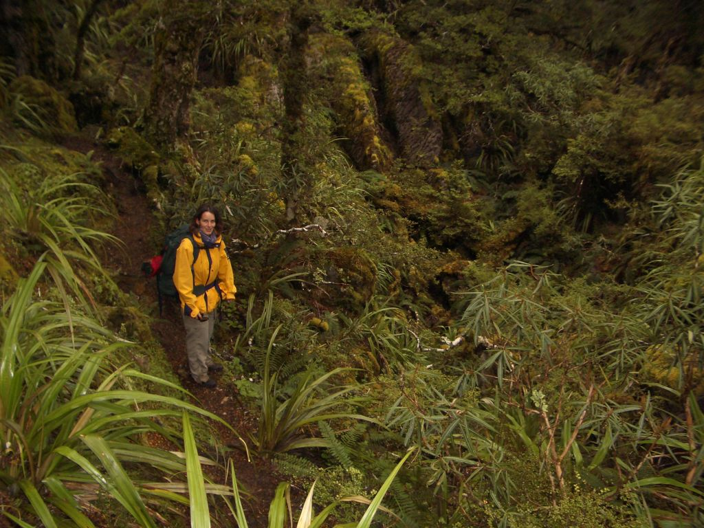 nz_hnz_d02_karen_in_forest.jpg