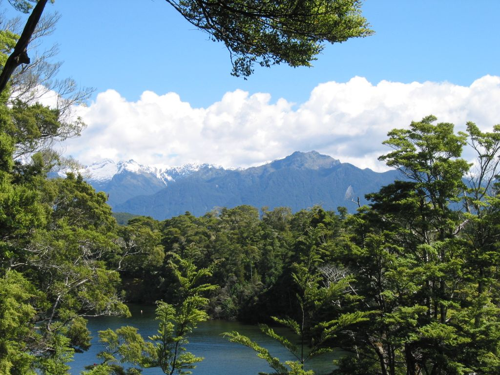nz_manapouri_view_1.jpg