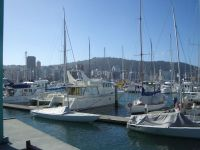 nz_wellington_marina_tb.jpg