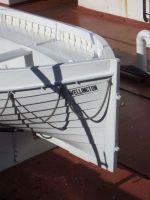 nz_wellington_rowboat_tb.jpg