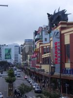 nz_wellington_street3_tb.jpg