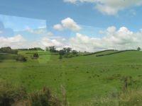 nz_wellington_train_to1_tb.jpg