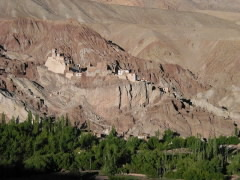 tb_in_ladakh_fort.jpg